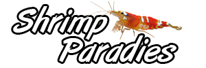 Shrimp Paradies Logo